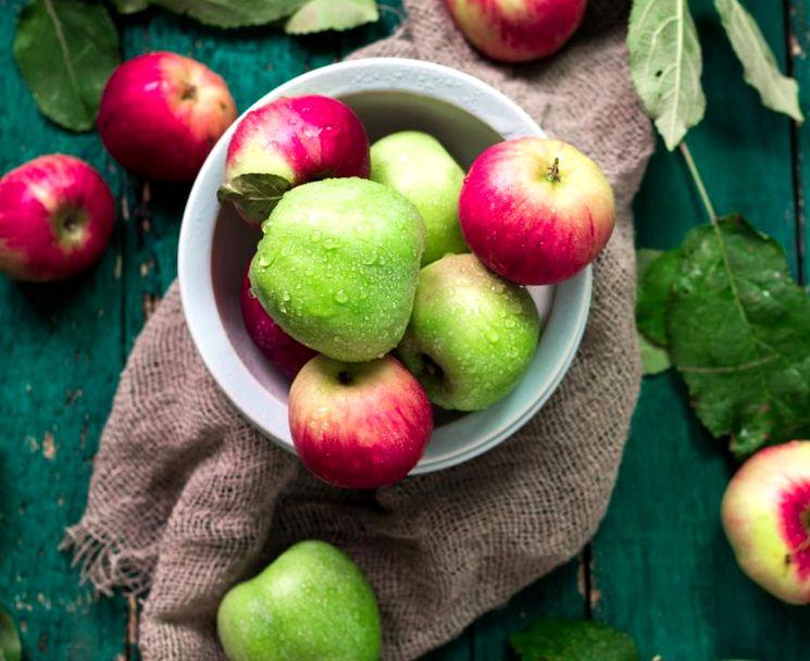 Что нужно знать про яблоки