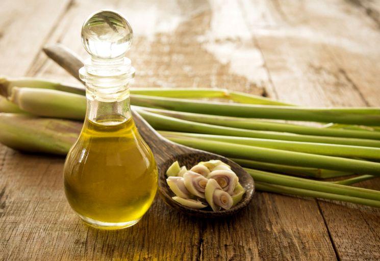 Эфирное масло лемонграсса