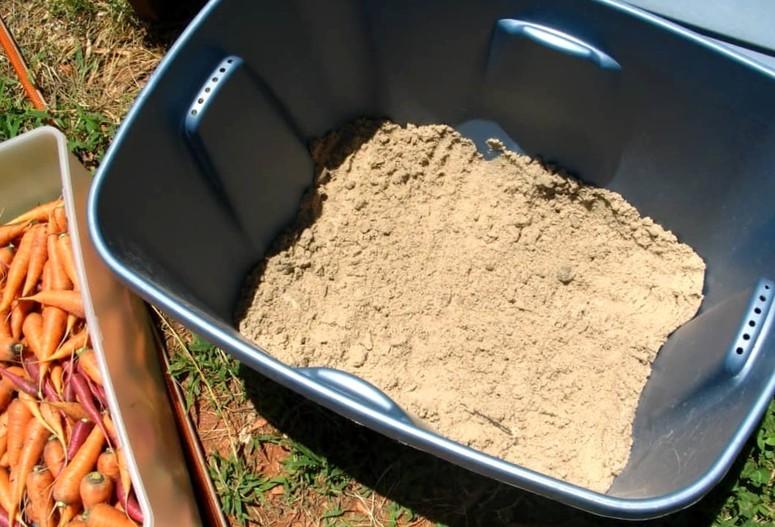 Морковь на зиму - хранение в песке 1