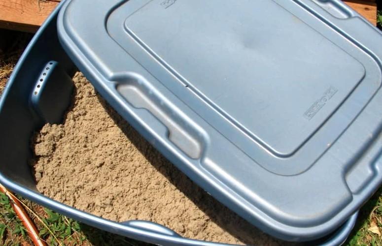 Морковь на зиму - хранение в песке 4