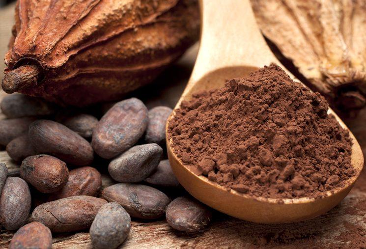 Какао: плоды, бобы и порошок