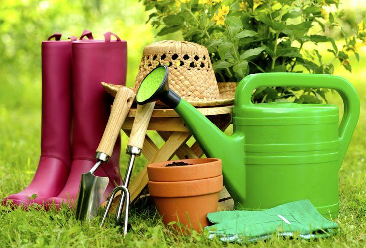 Harvest Center — все для садовода в одном месте
