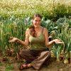 Хороший урожай лука