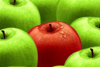 Спас Яблочный 2019 - как и когда празднуют Яблочный Спас
