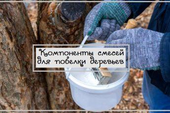 Основные компоненты смесей для побелки деревьев