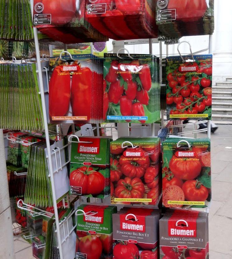 Магазин семян томатов