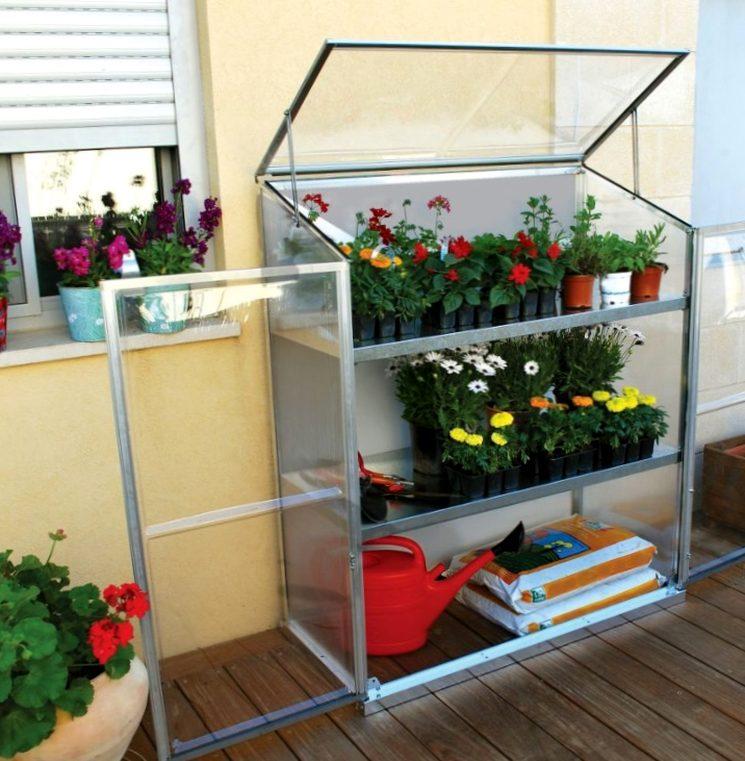 Мини-парник на балконе со стелажами
