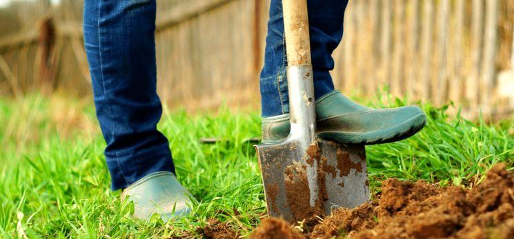 Как вносят удобрения под перекопку осенью?