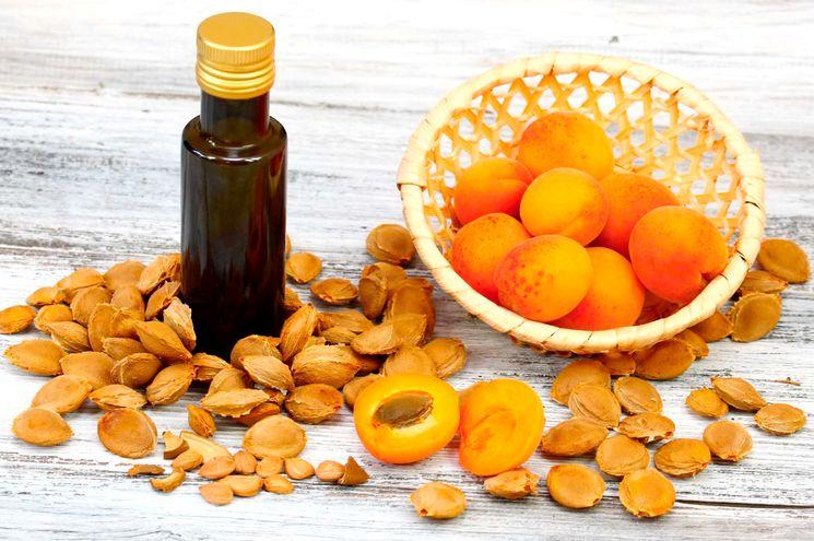 Польза и вред абрикоса