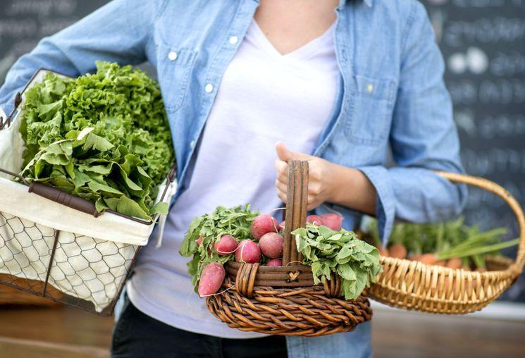 Правила посева овощей под зиму