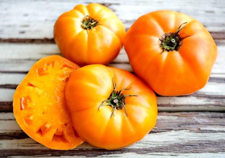 Сорт томатов Медовый спас
