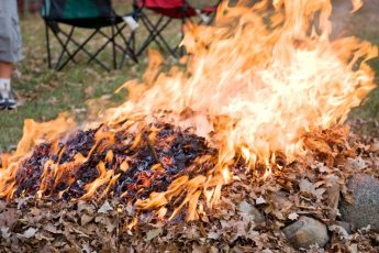 Сжигание листвы в саду
