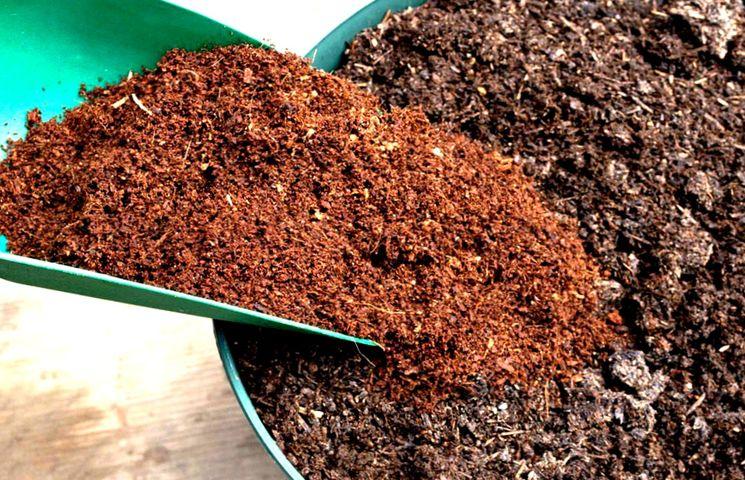 Торф как органической удобрение