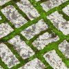Борьба с травой в швах тротуарной плитки