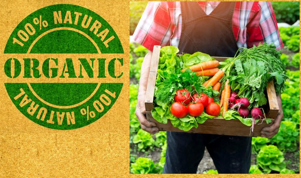 В России обсуждают изменения в законе об импортной органической продукции